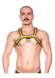 Prowler Red Bull Harness Blk/yell Md