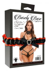 Barely Bare Mesh Bra andamp; Panty Set With Lace Choker 2pc - O/S - Black